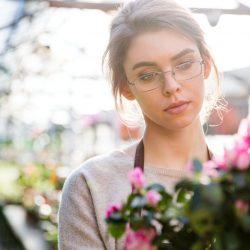 koetsiers greenhouse-AdobeStock_100526589